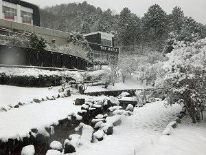 雪が降りました☆