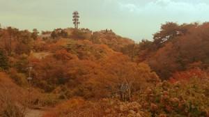 ホテルから見た紅葉の景色