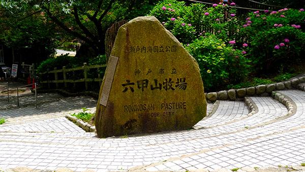 神戸観光~ 六甲山牧場