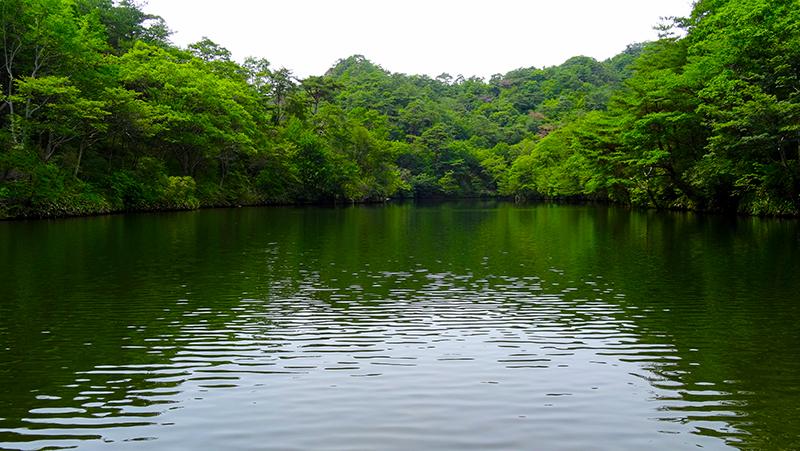 神戸観光~ 六甲山・穂高湖